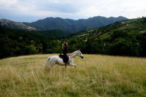 Sans bride, sans fers et sans arçon : à cheval vers la liberté avec Titania Corre, élevage MND painthorse, qualité, nature et magie