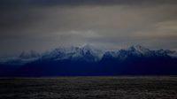 Norvège, Vesteralen, un road-trip en hiver à la rencontre des cachalots