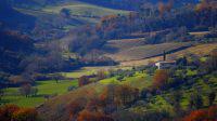 Paysage de Toscane, Italie, road-trip