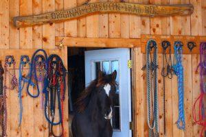 Lou au Teepee Heart Ranch