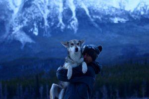 le grand nord avec un chien-loup